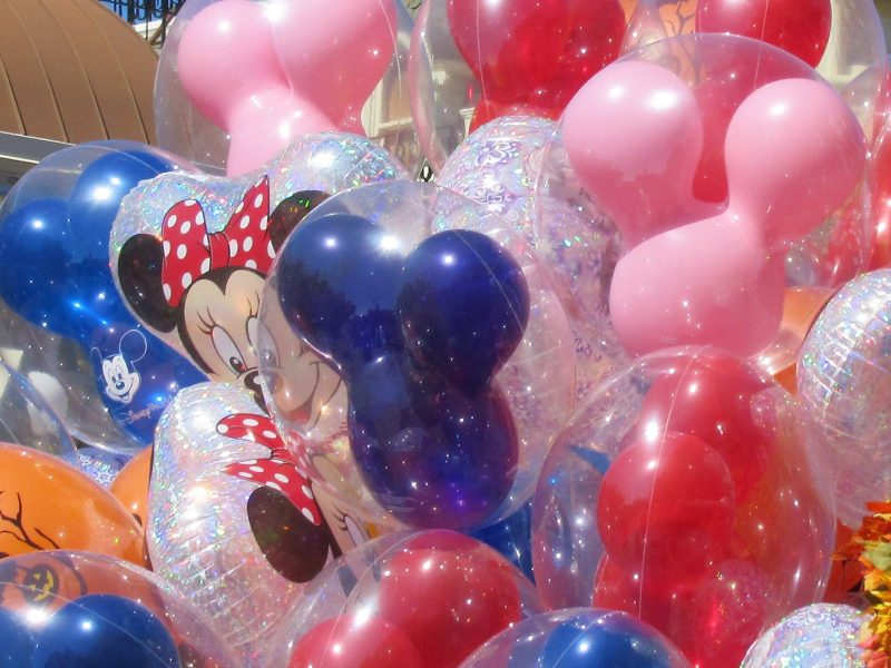 Must-Have Essential Items for A Stress-Free Disney Day