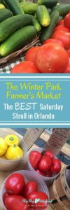 If you are looking for a frugal, fun and family-friendly weekend activity in Orlando, look no further than the Winter Park Farmer's Market. With amazing food, fun booths and relaxed atmosphere, it is one of the best ways to spend a Saturday morning in Central Florida! Check out all the details in this post.