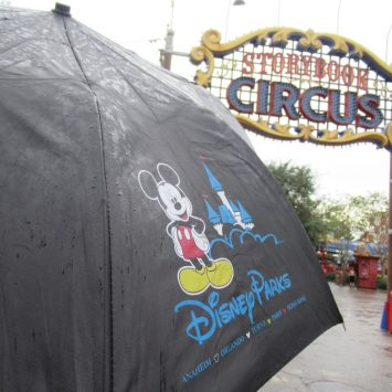 Disney World Weather Less Than Magical? Check Out These Top Rainy Day Disney Tips