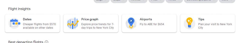 Google Search Flight Insights