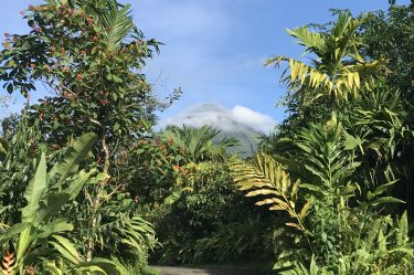 If you have just a few days to get away, a Costa Rica vacation is still possible. We did five days for less than $1,000. We loved the country so much and will definitely return. To encourage you to add it to your list, I will outline our Costa Rica travel itinerary with tips and guides that you can follow...or adjust for your own travel preferences. Plus, I will even show you how we did it so cheap!